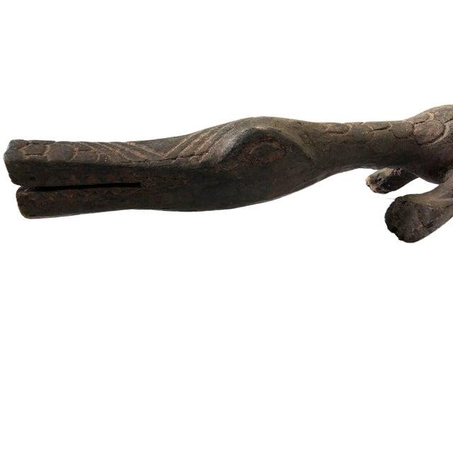 African Crocodile Burkina Faso For Sale In New York - Image 6 of 7