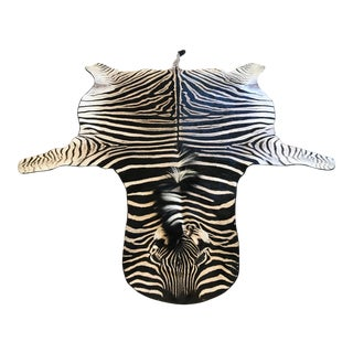 Equus Burchell Zebra Skin Rug - 5′4″ × 8′3″ For Sale