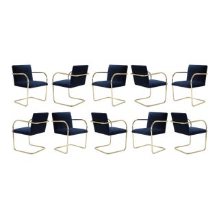 Brno Tubular Chairs in Navy Velvet, Polished Brass, Set of 10 For Sale