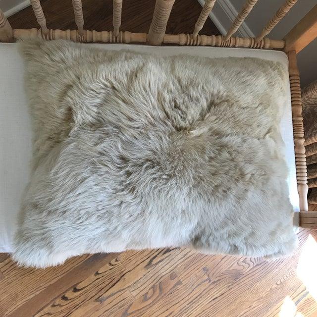 Peruvian Baby Alpaca Fur Pillow - Image 6 of 7