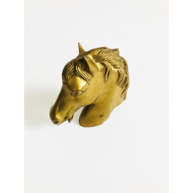Late 20th Century Large Vintage Brass Horse Head For Sale - Image 5 of 7