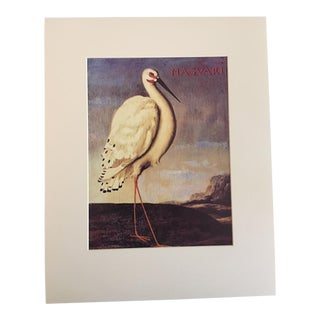 "Albert Eckhout's Maguari Stork - 1970s Print of 1644 Painting From ""Birds of Brazil"" For Sale"