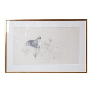 Count Bernard De Claviere Borzoi Hunting Dog Original Framed Sketch For Sale