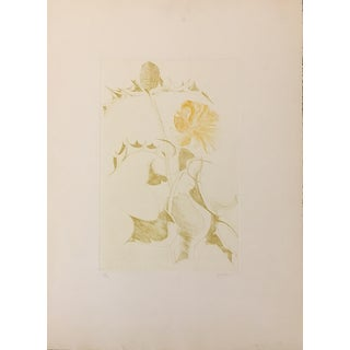 """Thistle and Yellow Flower"" Etching by Leonard Baskin For Sale"