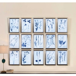 Uttermost Blue Dried Flowers Framed Prints - Set of 15 Preview