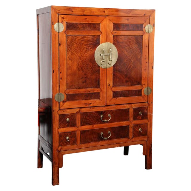 Large Chinese Hebei Burl Wood Paneled Cabinet With Brass Hardware C. 1900 For Sale