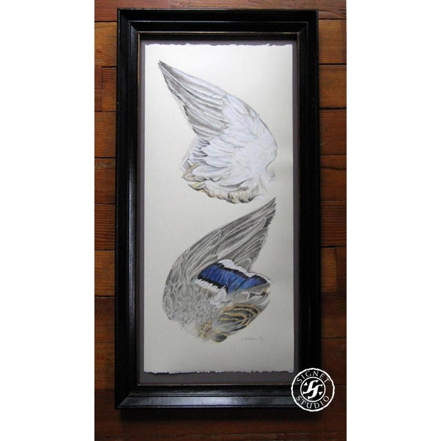 """Wing of a Mallard"" was created after finding a beautiful bird which had just been hit along the highway. Drawing the..."