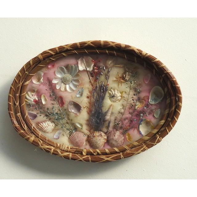 Antique Pine Needle Basket & Seashell Vanity Tray For Sale - Image 6 of 6