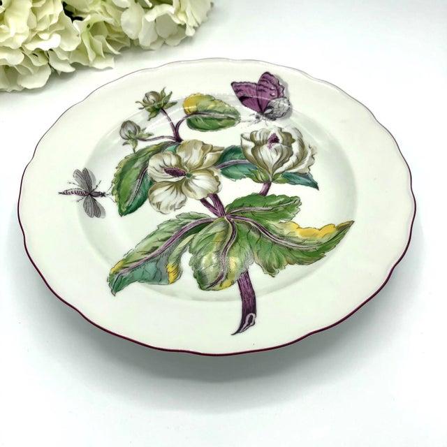 English Mottahedeh Chelsea Botanical Vista Alegre Dinner Plates - Set of 4 For Sale - Image 3 of 12