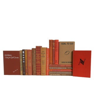 Vintage Sports Lovers Book Set in Warm Browns, S/18 For Sale