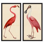 Pink Birds Prints- a Pair