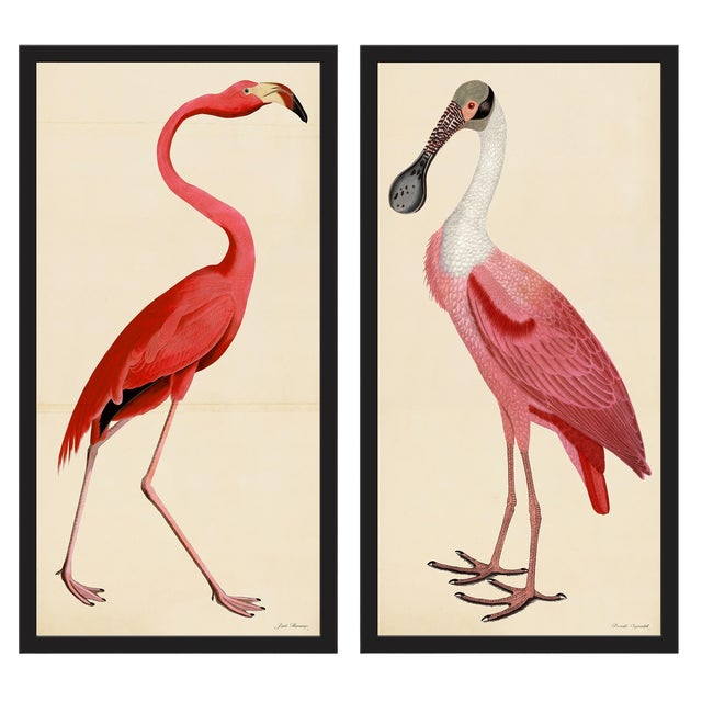 Pink Birds Prints- a Pair For Sale