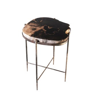 Round Living Edge Petrified Wood Top W Iron Stand Accent Table For Sale