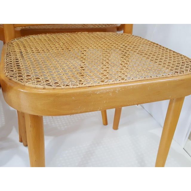 Vintage Stendig Cane Bentwood Dining Chairs- Set of 6 For Sale - Image 9 of 12