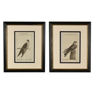 Late 18th Century Antique Framed German Bird Prints - A Pair Preview