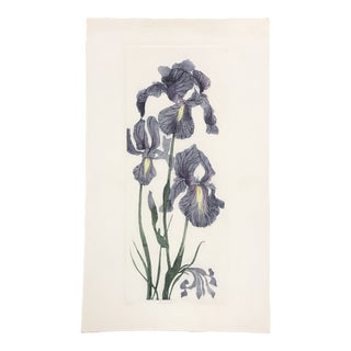 "1990s Vintage ""Five Irises"" Etching For Sale"
