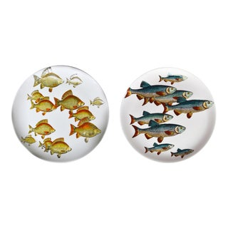 Pair of Rare Piero Fornasetti Fish Plates, Pesci Pattern or Passage of Fish, Numbered # 2 & 3 For Sale