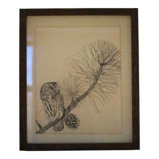 1970s Large Vintage Framed Owl Sketch For Sale