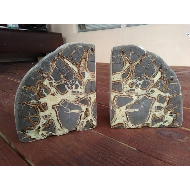 Septarian Concretion Bookends - a Pair For Sale - Image 5 of 6