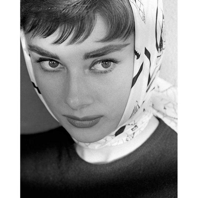 1950s Audrey Hepburn 1953 For Sale - Image 5 of 5