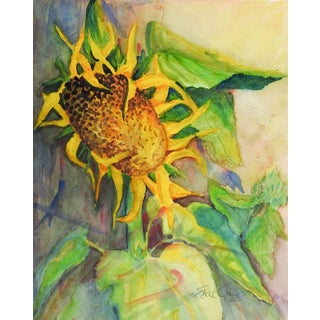 Sunflower Watercolor by Edith Craig For Sale