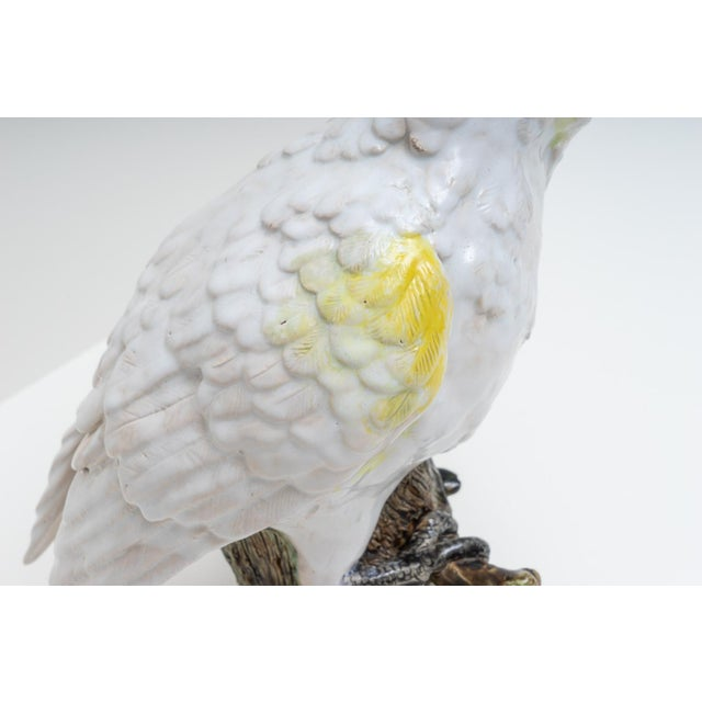 Mid 20th Century 1930s Hand Painted Cockatoo Figure by Silvestrie For Sale - Image 5 of 13
