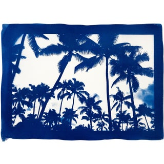 """Acapulco Palm Sunset"" With Blue Border/ Hand-Printed Cyanotype on Watercolor Paper / 70x100cm / Limited Edition For Sale"