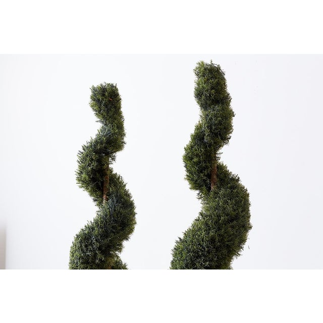 Pair of Faux Spiral Cypress Trees in Urns For Sale - Image 11 of 13