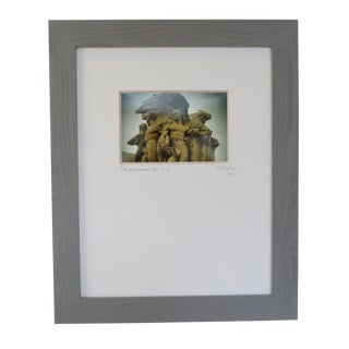 Triumph of Man, Wdc. Custom Framed and Matted by C. Damien Fox For Sale