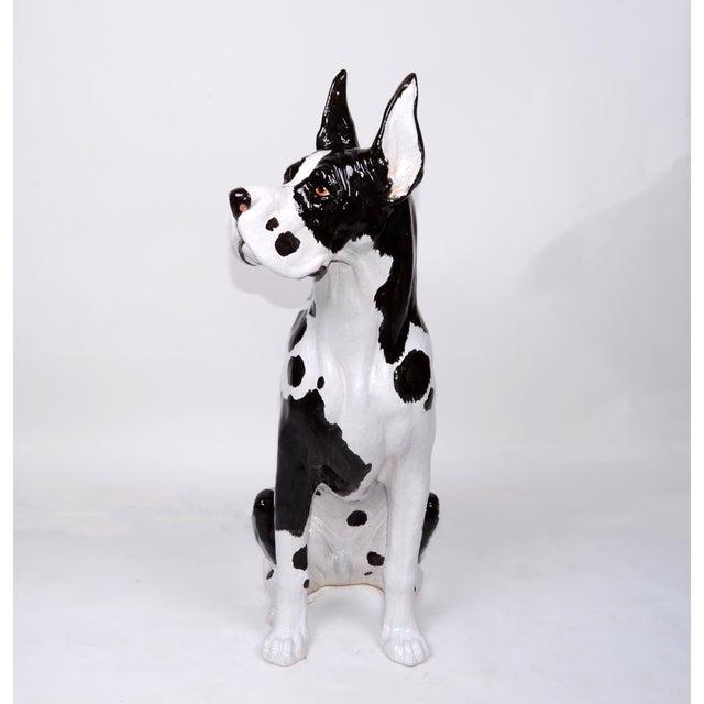 Italian Ceramic Life Size Great Dane Sculpture For Sale - Image 11 of 11