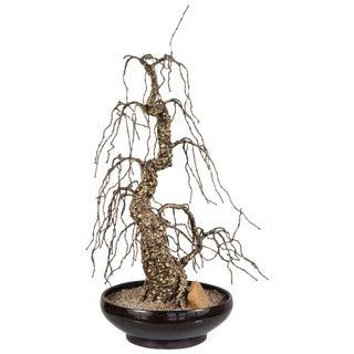 Mid-Century Modern Tall Bronze Bonsai Tree Sculpture For Sale