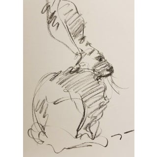 Jose Trujillo Original Charcoal Modern Paper Sketch Drawing Rabbit For Sale