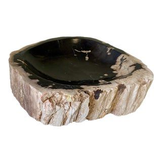 Petrified Wood Catchall Bowl For Sale