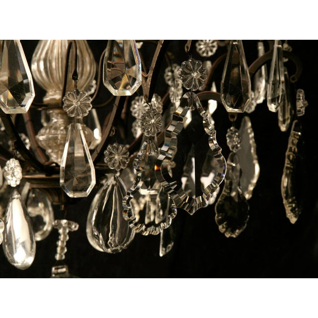 Vintage French Crystal 8 Light Chandelier For Sale In Chicago - Image 6 of 10