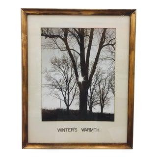 Vintage Giltwood Frame Photograph For Sale