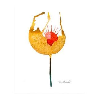 Premium Giclee Print Of Botanical Yellow Poppy For Sale