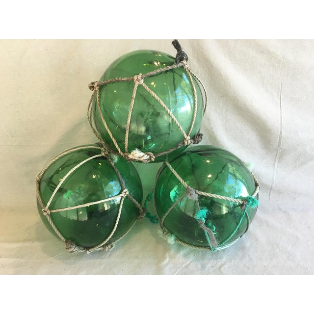 Grouping of three vintage jumbo hand-blown deep emerald green glass fishing floats with rope and twine netting. Rope...