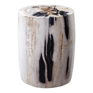 Petrified Wood Side Stool