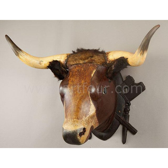 a very large carved bull head. formerly a decoration in a south german butchery. ears and horns original from a bull....