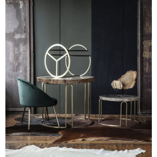 A perfect blend of mod style and old-world glamour, our Chantilly Side Chairs feature luxurious velvet upholstery and...