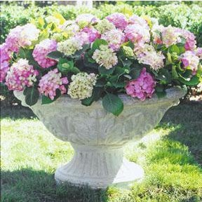 Our large footed oval planter has a ribbed base and a large planting bowl with an exterior of Acanthus leaf details. The...