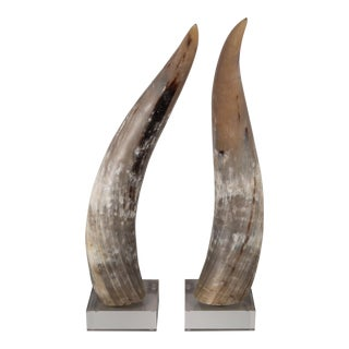 Custom Mounted Large Texas Longhorn Cattle Horns on Acrylic For Sale