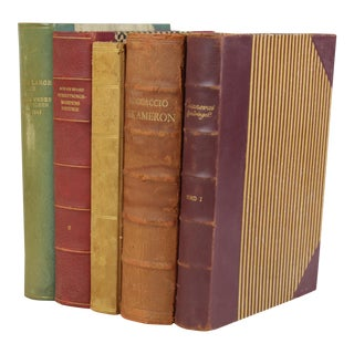 Colorful Leather-Bound Books - Set of 5
