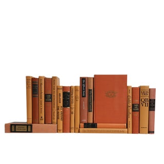 Midcentury MIX in Pumpkin Spice : Set of Twenty Decorative Books