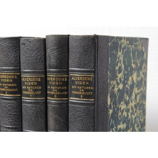Scandinavian Leather-Bound Books S/7 Preview