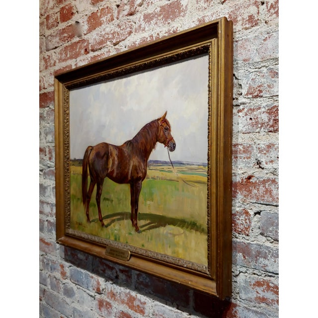 Peter Biegel -Matador , Portrait of a Horse -Oil Painting For Sale In Los Angeles - Image 6 of 10