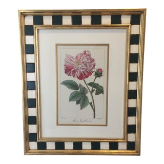 "Late 20th Century Vintage Framed ""Rosa Gallica Botanical Print"" by Pancrace Bessa For Sale"