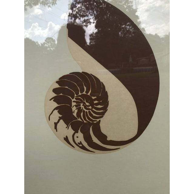 Cool vintage lithograph prints of chambered nautilus shells. Van Guard Studio signed by artist. Done in monotone colors....