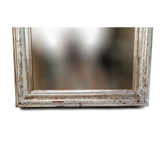 Silver Silver Leaf Mirror With Etched Vine Design, Original Mirror For Sale - Image 8 of 13
