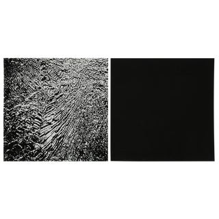 Jes Wind Andersen, Diptych, Mixed Media 1997 For Sale